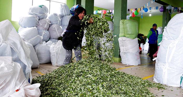 Bolivia profundiza acuerdos con Uruguay por salida marítima para sus productos