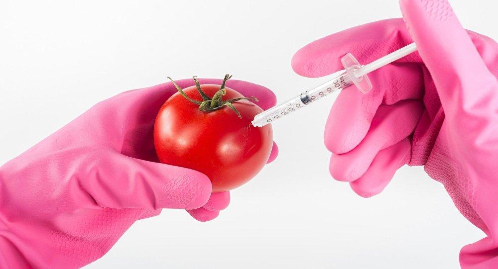 OGM (imagen referencial)