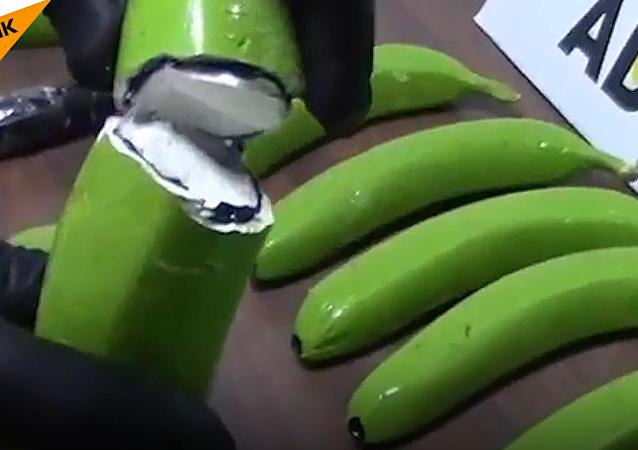 La Guardia Civil de España ha encontrado 17 kilogramos de cocaína en un cargamento de plátanos procedente de Suramérica