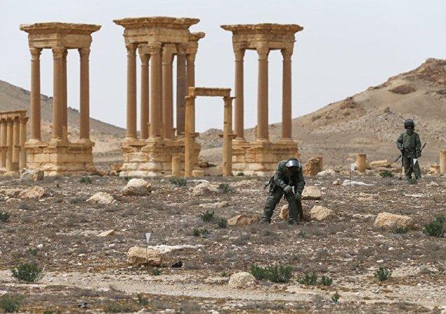 Desminado de Palmira, Siria