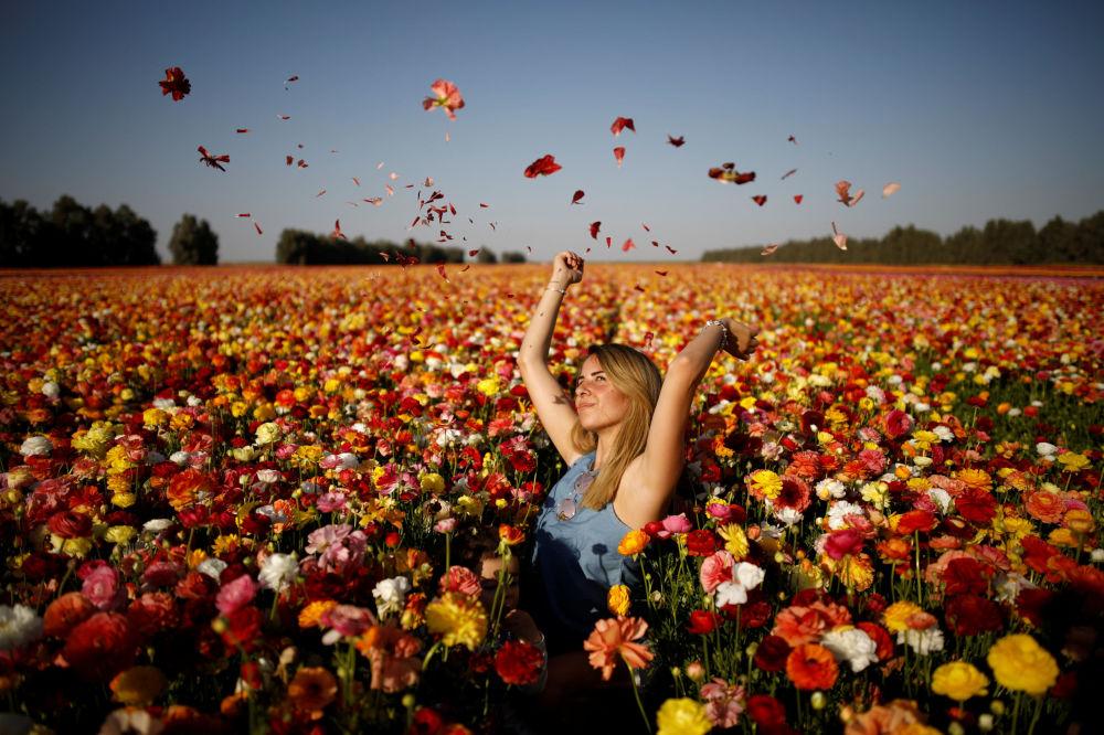 Una joven posa para la foto en un campo de flores en el sur de Israel