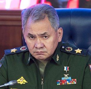 El ministro de Defensa de Rusia, Serguéi Shoigú
