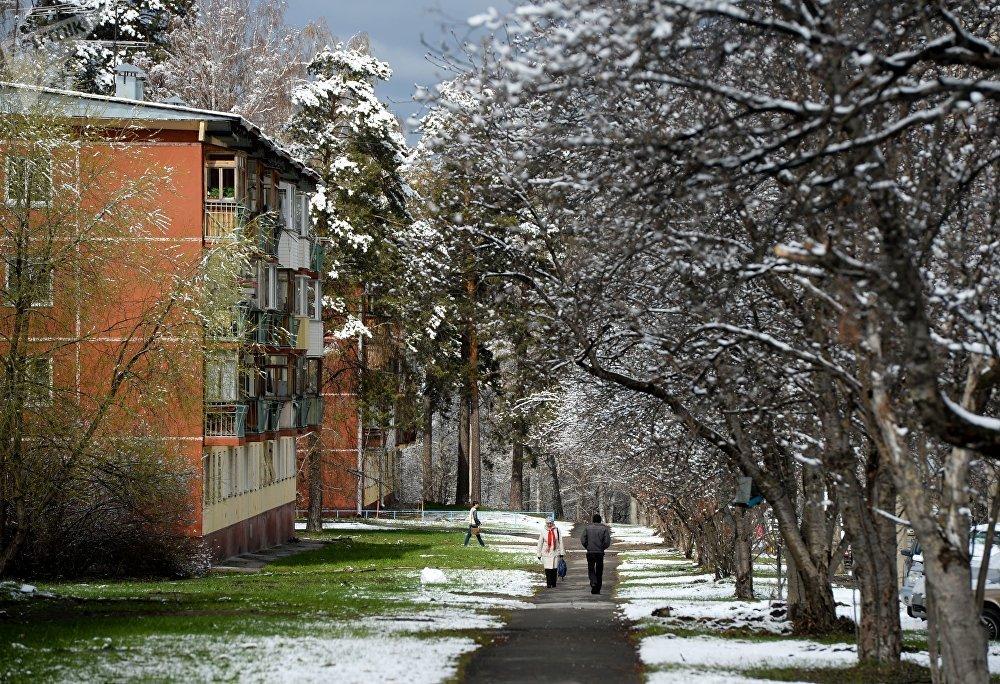 Una calle en Akademgorodok de Novosibirsk después de una nevada en mayo.