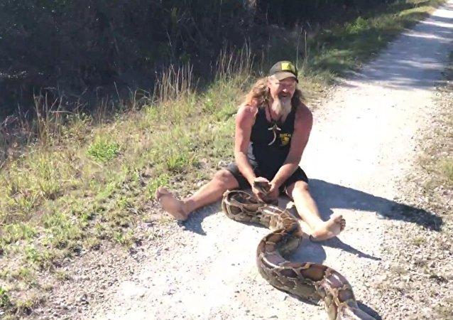 Hombre caza con sus propias manos a una pitón de 58 kilos