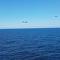 Bombarderos rusos Su-24 saludan a la fragata de la OTAN en el Báltico