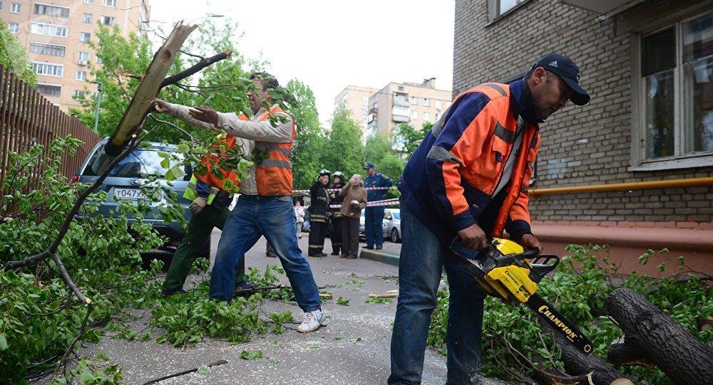 Consecuencias de la tormenta en Moscú