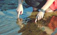 El agua (imagen referencial)