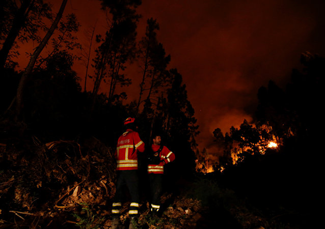 Un incendio forestal cerca de Pedrógao Grande, en Portugal