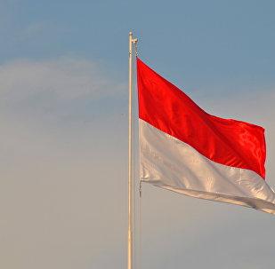 Bandera de Indonesia (archivo)