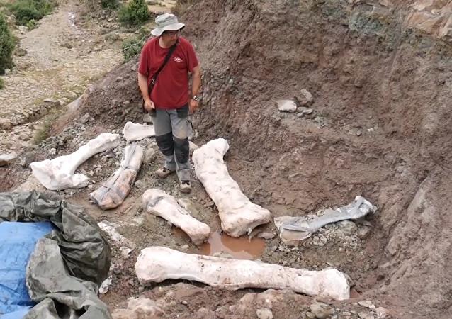 Excavación cercana a Morella, España
