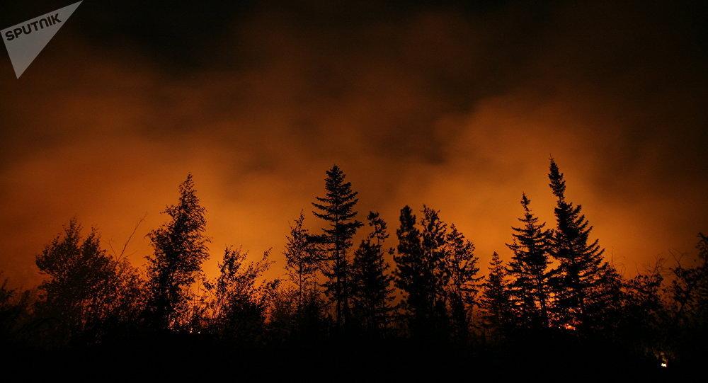 Incendio forestal (archivo)