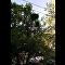 Una chica cae desde siete metros en un parque de atracciones en EEUU