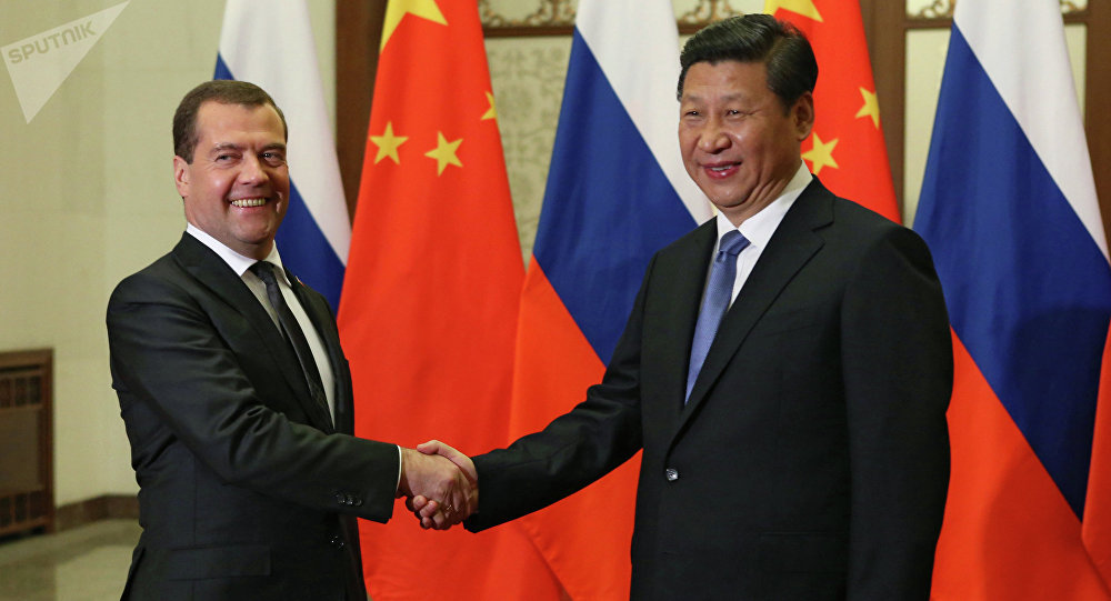 Dmitri Medvédev, primer ministro de Rusia, y Xi Jinping, presidente de China, durante una entrevista en Pekín (Archivo)
