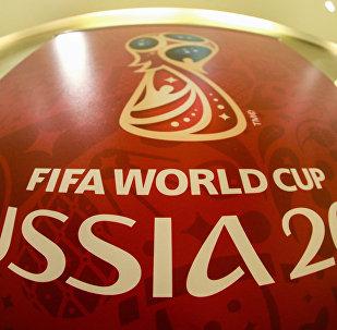 Copa Mundial de Fútbol de Rusia 2018 (imagen referencial)
