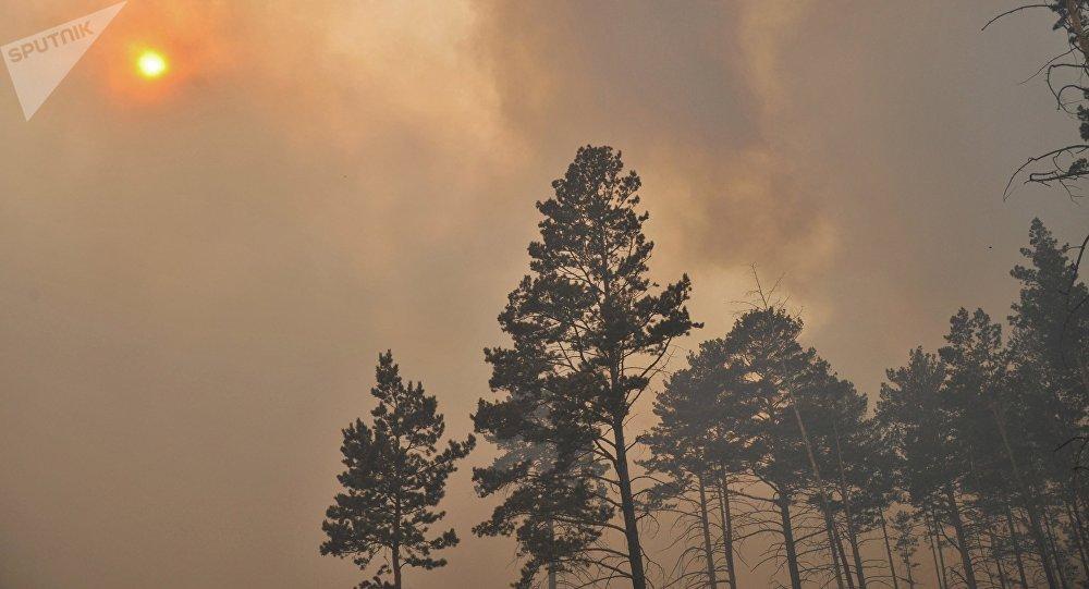 Incendios forestales in Siberia