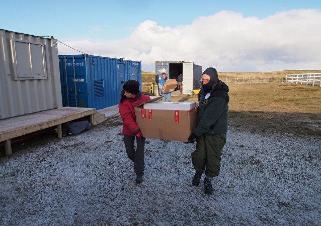 La exhumación de los restos de soldados argentinos en las islas Malvinas