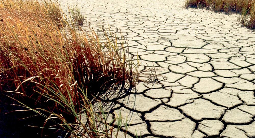 Sequía (imagen referencial)