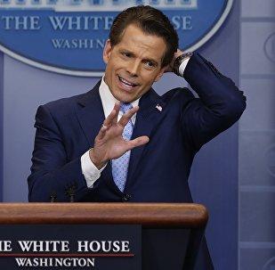 Anthony Scaramucci, exdirector de comunicaciones de la Casa Blanca (archivo)