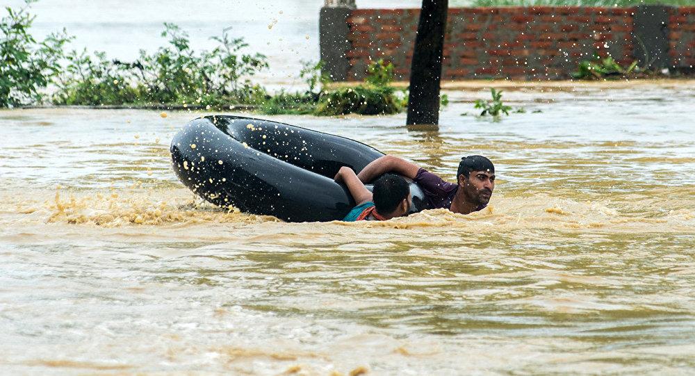Nepal: Elefantes ayudan a rescatar a cientos de turistas en inundaciones