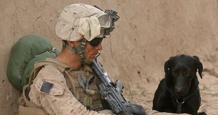 Un soldado estadounidense