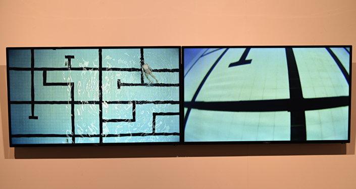 Una instalación de Bienalsur en el Museo Nacional de Artes Visuales de Montevideo