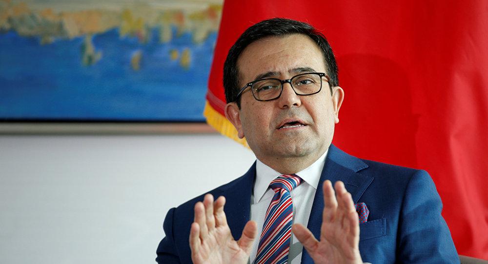 Ildefonso Guajardo, secretario de Economía de México (archivo)
