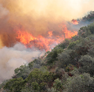 Incendio forestal en California