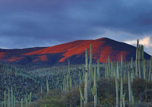 Un paisaje de México (imagen referencial)