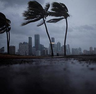 El huracán Irma en Florida, EEUU