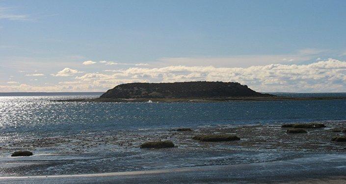 La isla de los Pájaros, en Chubut, Argentina