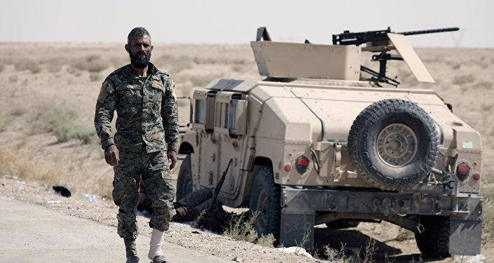 Un combatiente de FDS (archivo)