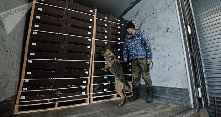 Un aduanero ruso (imagen referencial)