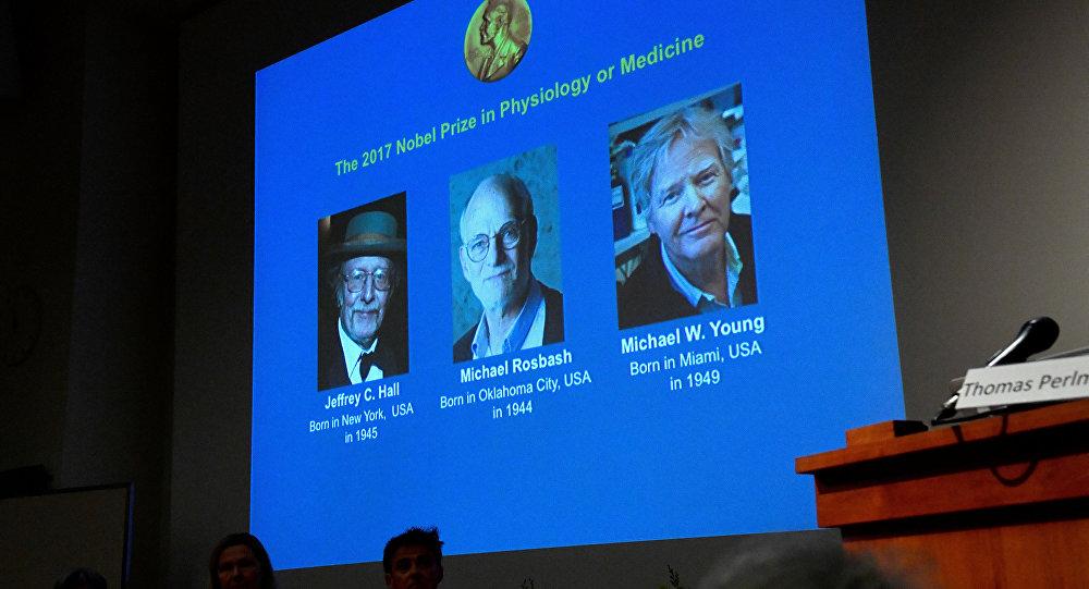 Hallazgos sobre ritmos circadianos ganan Nobel de Medicina