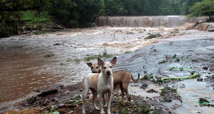 Inundaciones y cortes de energía por el paso de Nate