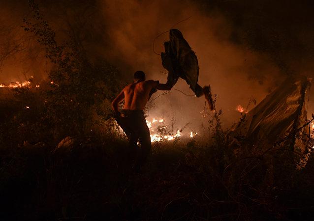Incendio en Galicia, España