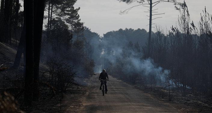 Sofocan el incendio en el Parque Tunari; arrasó aproximadamente 250 hectáreas
