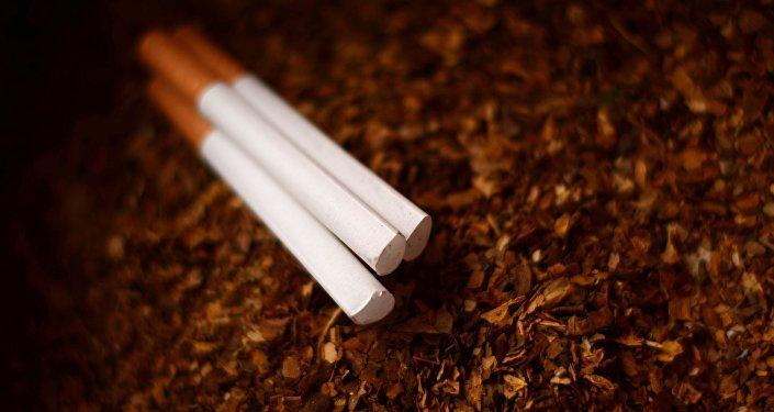 Tabaco (imagen referencial)