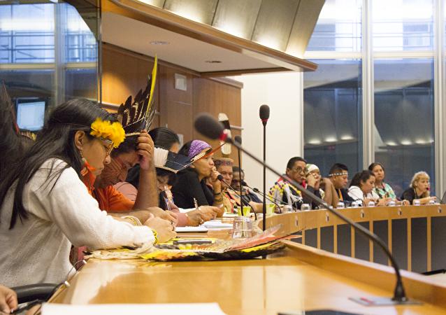 Guardianes de los Bosques se presentan ante eurodiputados