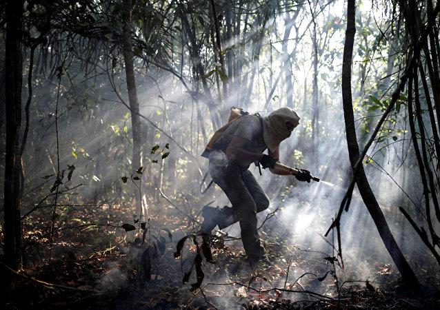 Un voluntario trata de apagar el incendeio en el parque nacional de la Chapada dos Veadeiros, Brasil