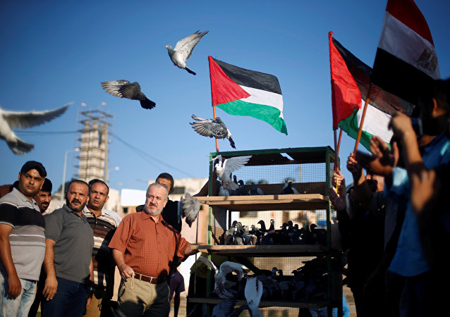 Banderas de Palestina y de Egipto