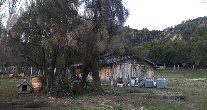 La vida cotidiana de los mapuches