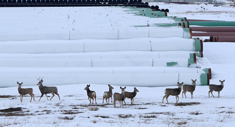 TransCanada revisará decisión de Nebraska sobre polémico oleoducto Keystone