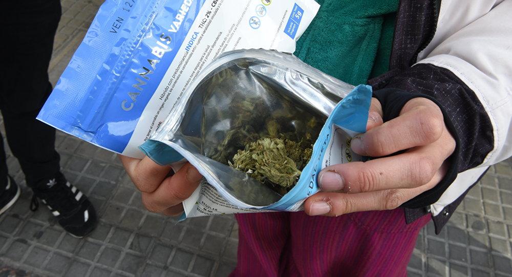 Farmacias comenzarán a vender cannabis medicinal