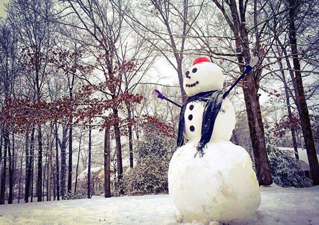 Un muñeco de nieve (archivo)