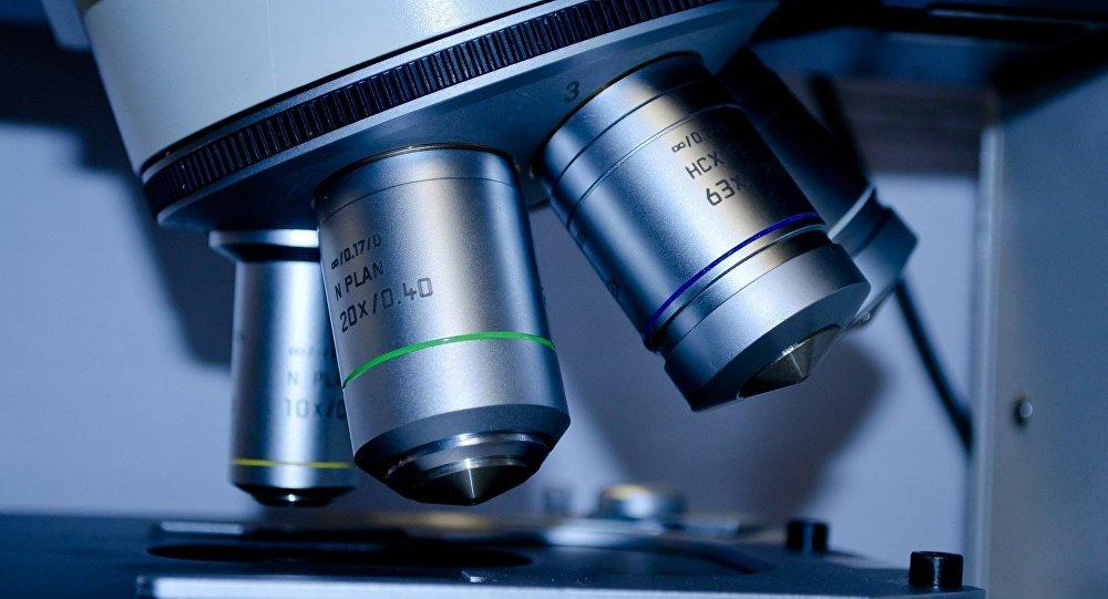 Un microscopio