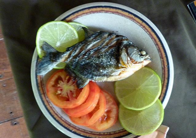 Una piraña grillada del Amazonas servida en Perú