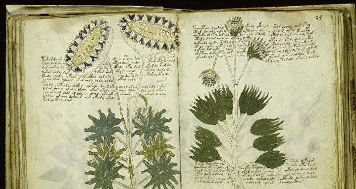 Unas páginas del Manuscrito de Voynich (imagen referencial)