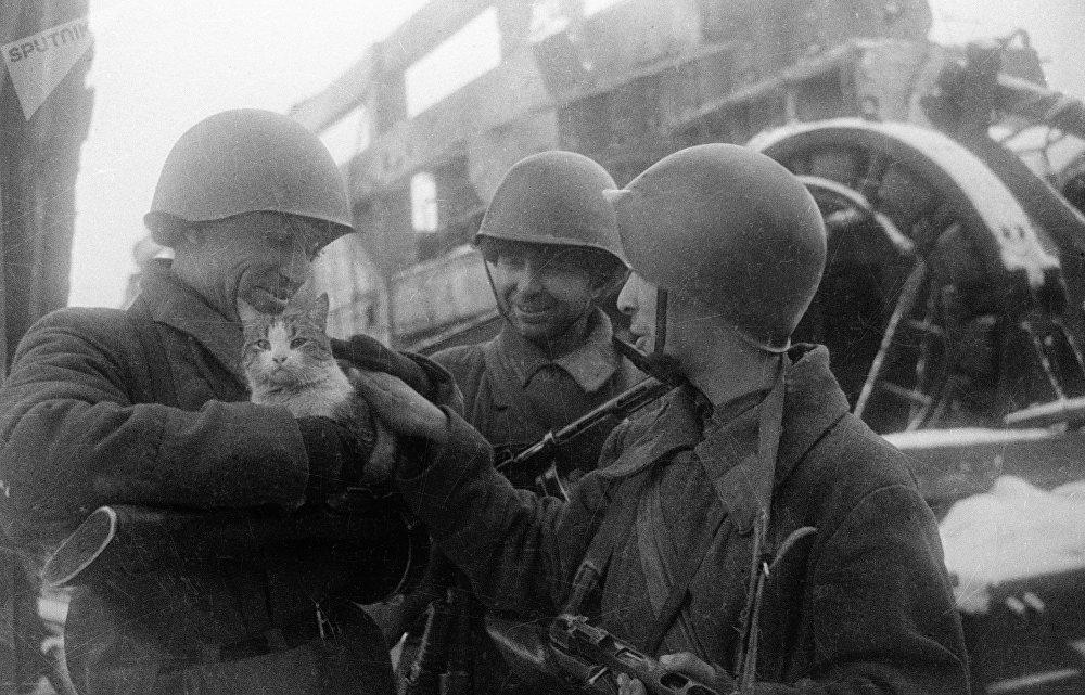 70 Aniversario de la batalla de Stalingrado 1075951379