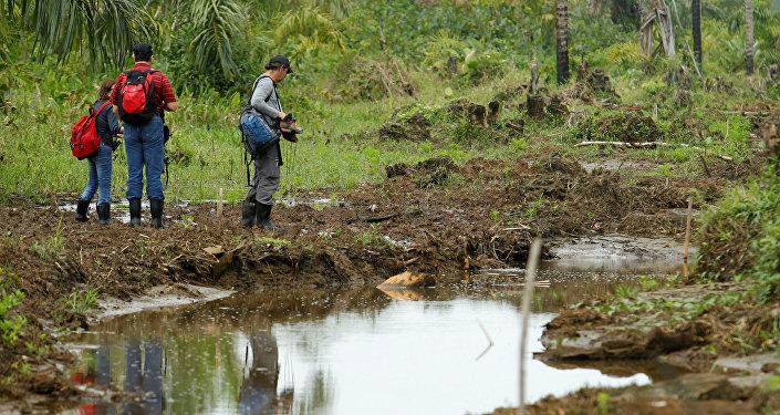 Los representantes del Convenio de Ramsar buscan daños ambientales en la Isla Portillos