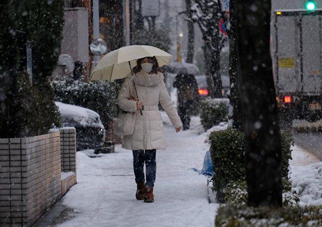 Una nevada en Japón